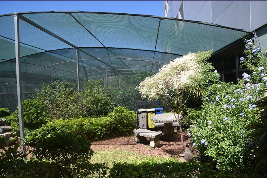 butterfly garden costa rica hospital